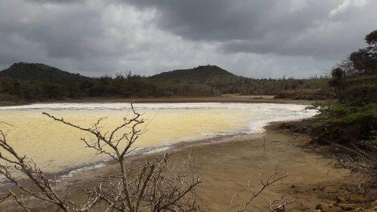 Washington-Slagbaai National Park, Bonaire: The salt lake in slagbaai