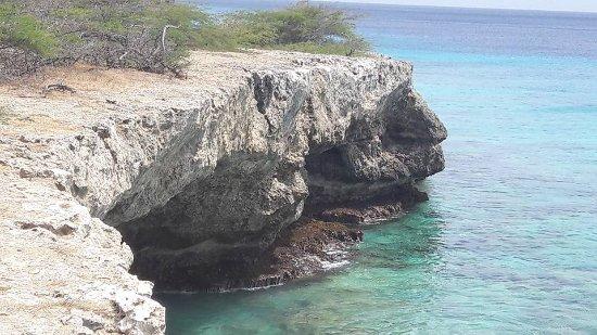 Washington-Slagbaai National Park, Bonaire: Beautiful for snorkling or diving