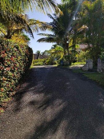 Residencial Casa Linda: received_1237485936361993_large.jpg