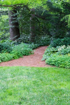 Chanticleer: Paths beckon to you to walk through the woods