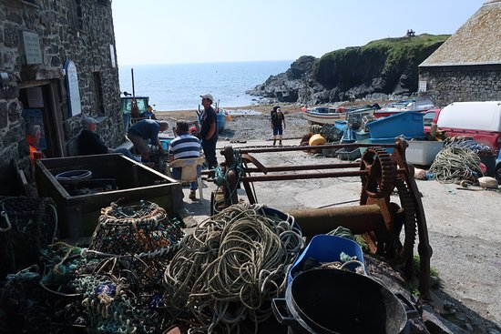 Cadgwith, UK: The harbour is across from the Old Cellars. Always something going on!