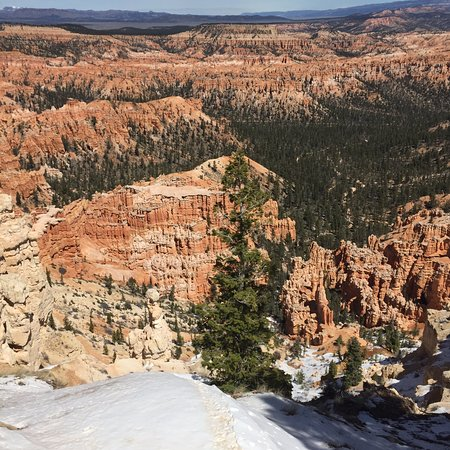 Bryce Point - Bryce Canyon National Park (8)