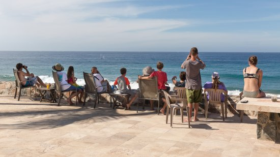 Elias Calles, México: Whale watching on the patio during whale season is unforgettable!