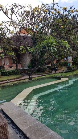 Ida Hotel: 20170616_094406_large.jpg