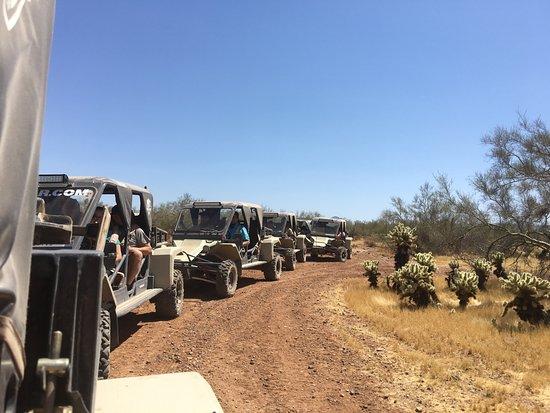 Desert Wolf Tours Image