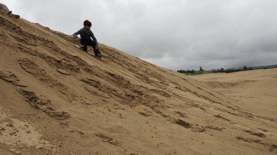 Sand Master Park: OI000070-01_large.jpg