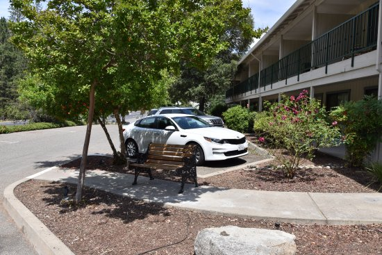 Cedar Lodge: Parking