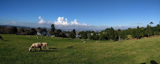 Cornwall Park : View of the city from the park