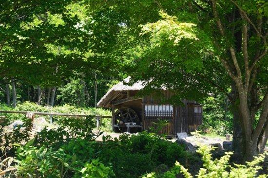 Okuaizu Museum : バッタリ小屋も再現されていました。