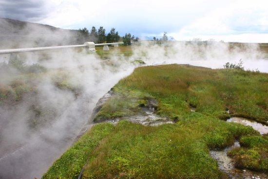 Reykholt, ไอซ์แลนด์: Steaming stream