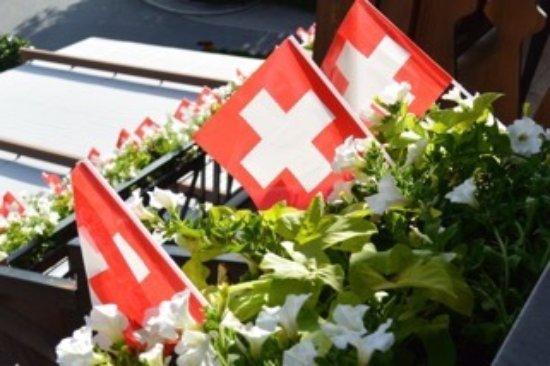 Park Gstaad: Ottimo albergo, servizio eccellente, fuochi d'artificio per la Festa del 1. Agosto!