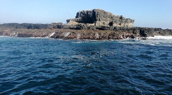 Cowes, Australia: Seal Rocks at The Nobbies