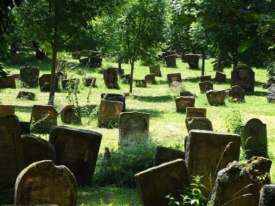 Jüdischer Friedhof Heiliger Sand