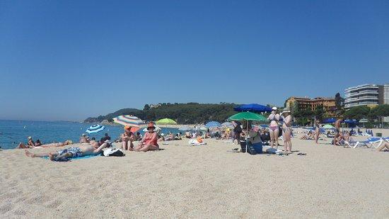 Fenals Beach : A sunny meedweek non