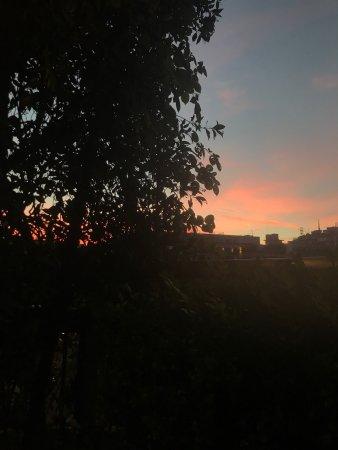 La Terrazza di Via Palestro: photo2.jpg