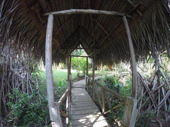 Punta Gorda, Belize: On our way to yummy breakfast