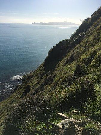Paekakariki, Nowa Zelandia: photo4.jpg