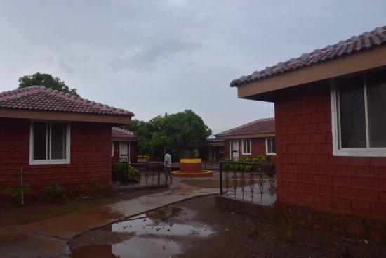 Resort in Mango orchard