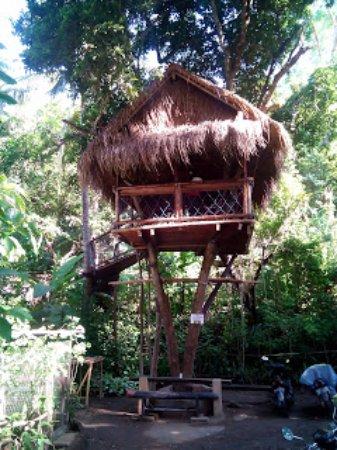 Manggis, Indonesia: Taru Agro
