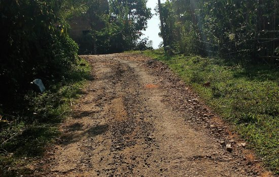 Planet Green Plantation Resort: Damaged Approach road