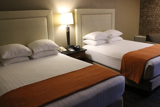 Drury Inn & Suites Austin North : Beds