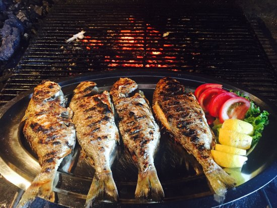 Zrnovo, Croatia: Fish and lamb