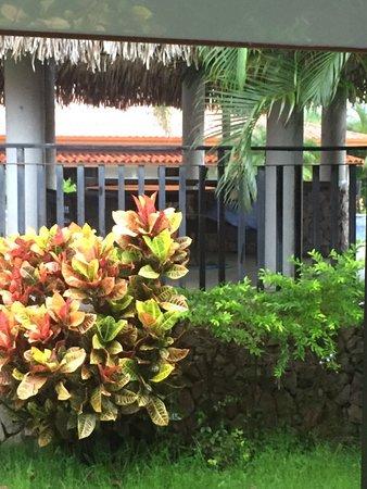 Hotel Cocle : IMG-20170616-WA0087_large.jpg