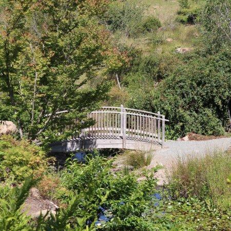 Quarryhill Botanical Garden Picture Of Quarryhill Botanical Garden Glen Ellen Tripadvisor