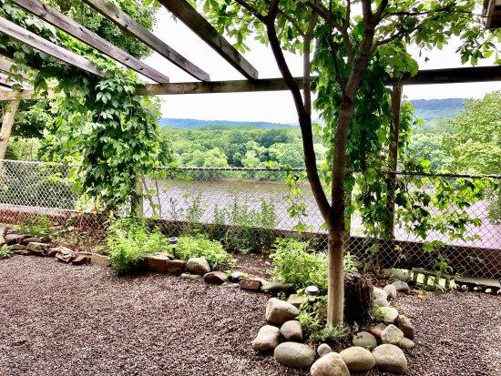 Berwick, Πενσυλβάνια: Beautiful beer garden, great beer, food and service!
