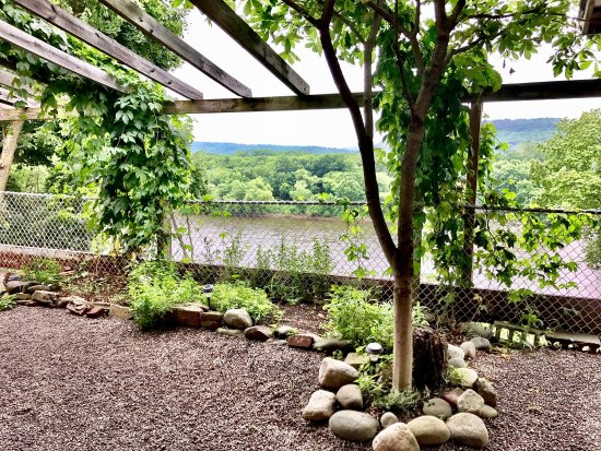 Berwick Brewing Company: Beautiful beer garden, great beer, food and service!
