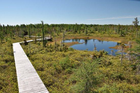 Levis, Canadá: Grande Plée Bleue