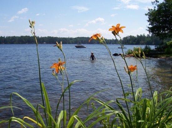Bridgton, ME: In for a swim