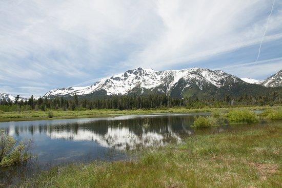 Tahoe Photographic Tours Photo