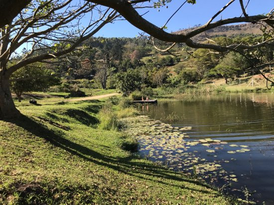 Hillcrest, South Africa: Mulberry Guest House Surroundings are so peaceful