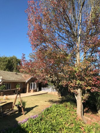 Hillcrest, South Africa: Mulberry Guest House is peaceful