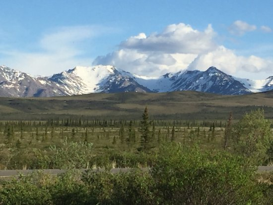 EarthSong Lodge - Denali's Natural Retreat: View from property, cafe, and west-facing cabins.