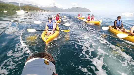 Kaneohe, هاواي: they towed us out about half way...then we paddled over to Gilligan's Island.....AWESOME!