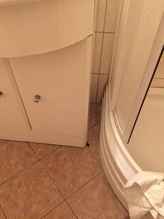 EA Hotel Mozart : тараканы на нижних этажах