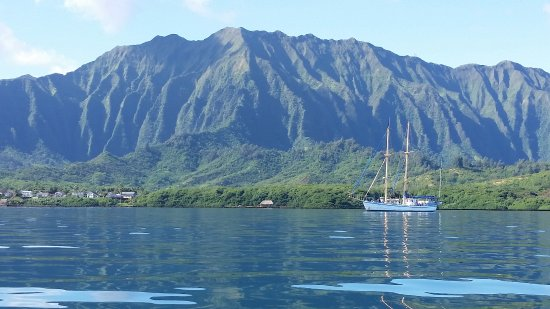 Kaneohe, هاواي: Looking back towards our starting point.