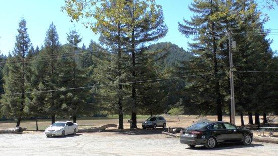 Leggett, CA: Parking area