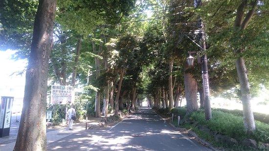 Hondo-ji Temple 사진