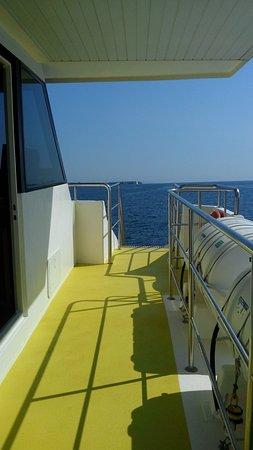 Starfish Glass Bottom Boats : CAM00062_large.jpg