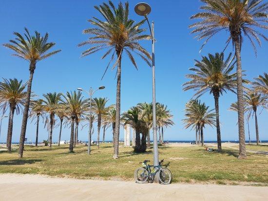 Playa de la Patacona