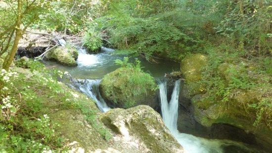Corchiano, Italia: Una cascatella del torrente Farfa.