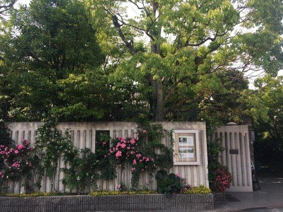 Higashiosaka, اليابان: photo4.jpg