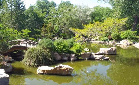 Japanese bridge picture of abq biopark botanic garden albuquerque tripadvisor for Botanical gardens albuquerque new mexico