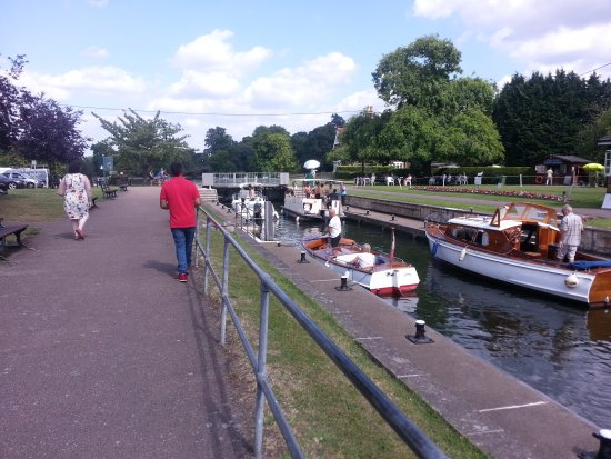 Shepperton, UK: 20170617_152155_large.jpg