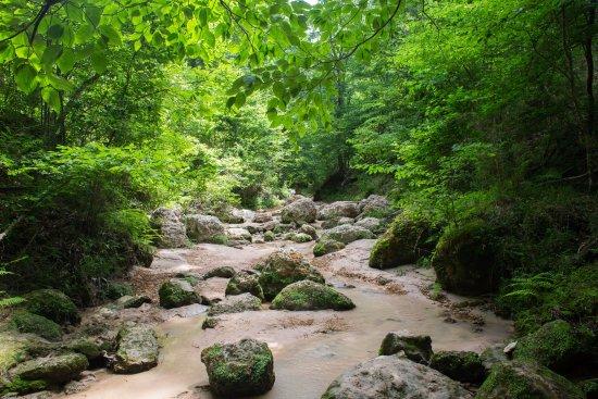 Woodville, MS : Trail