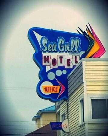 SeaGull Motel: 20170614_082736_large.jpg
