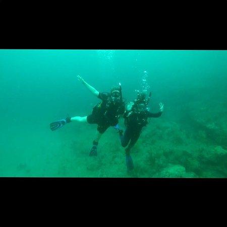Dixie Divers: photo1.jpg